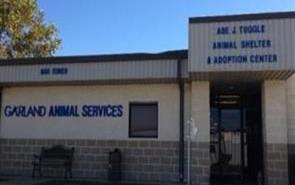 Garland animal shelter